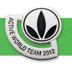 active world team pin