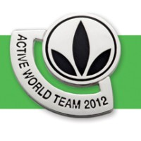 active world team pin